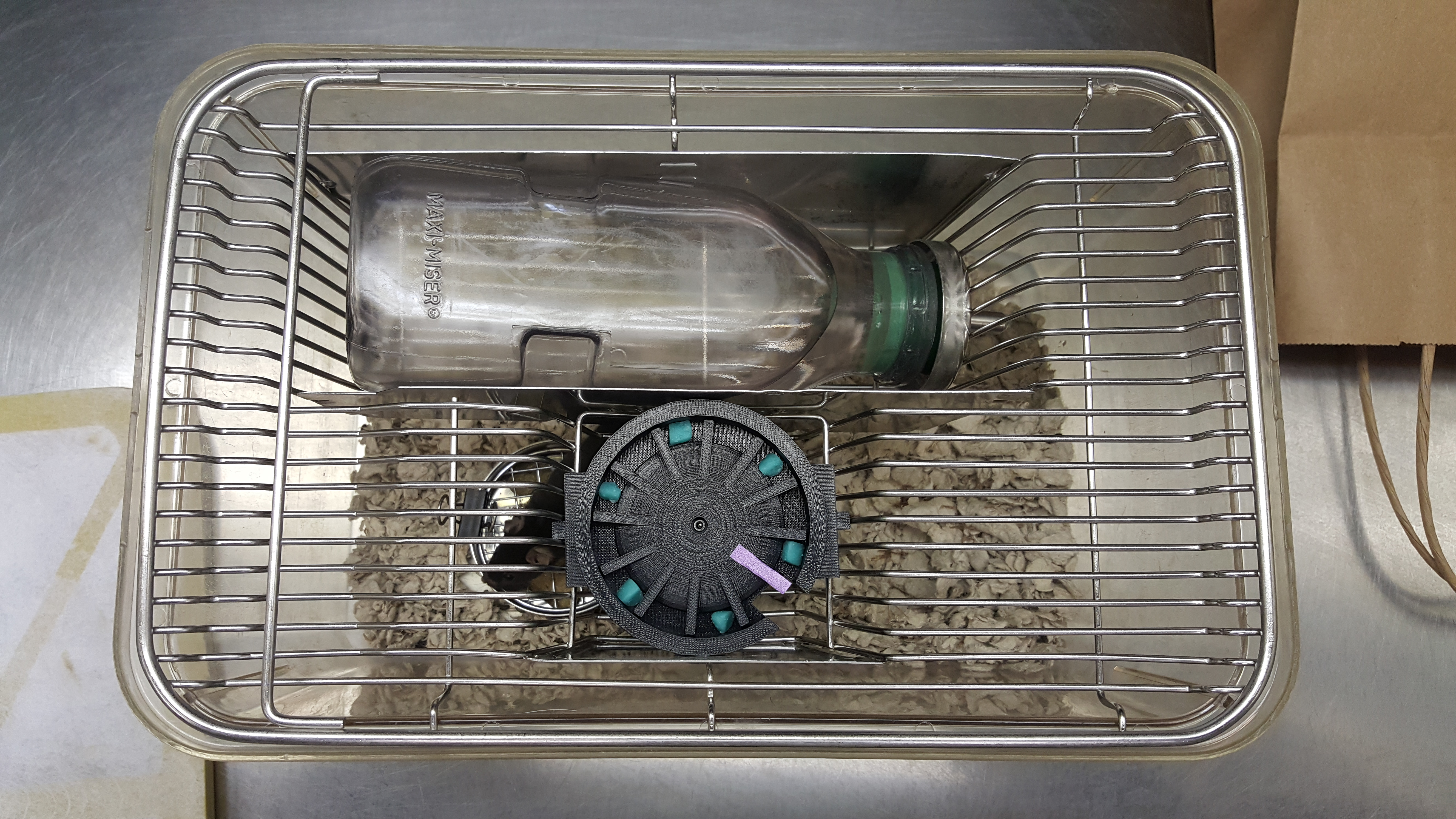 assembled snack clock in cage